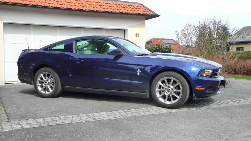 My Mustang 2010